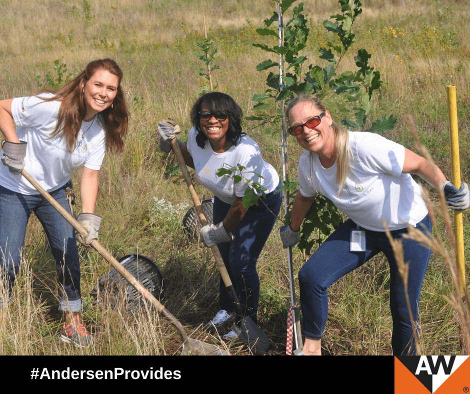 Andersen Celebrates World Environment Day with 10 Days of Nature Preservation Volunteerism