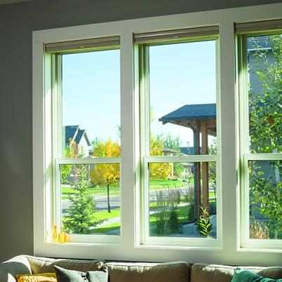 100 Series single-hung windows