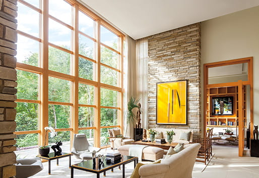 Texas Modern Window Style