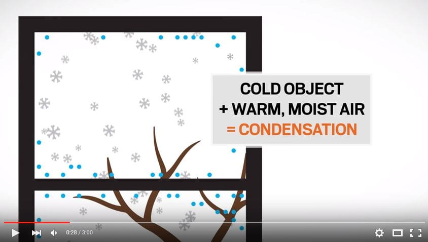Andersen windows doors support how to prevent condensation planetlyrics Images