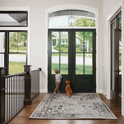 Entry Doors Dog