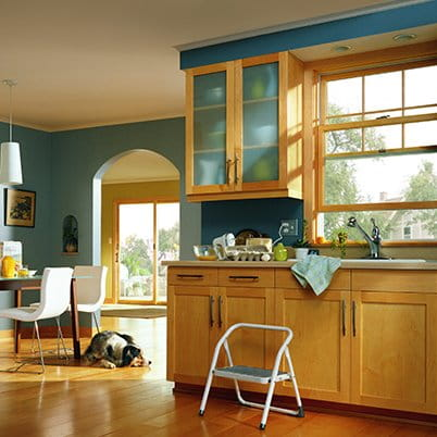 Andersen 200 Series Double-Hung Window