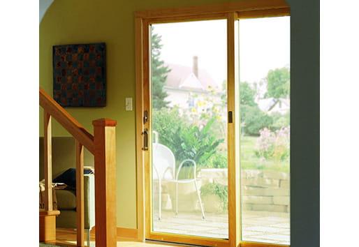 200 Series Narroline Door
