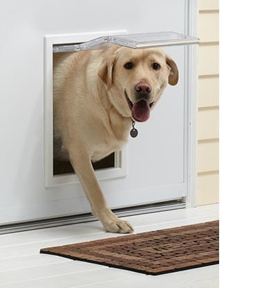 storm door pet entry system